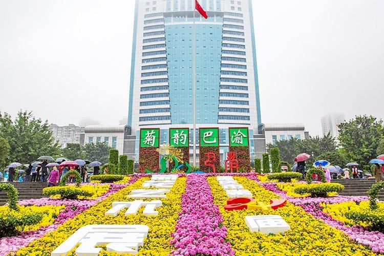 视频丨重庆市第24届菊花艺术展盛大开幕