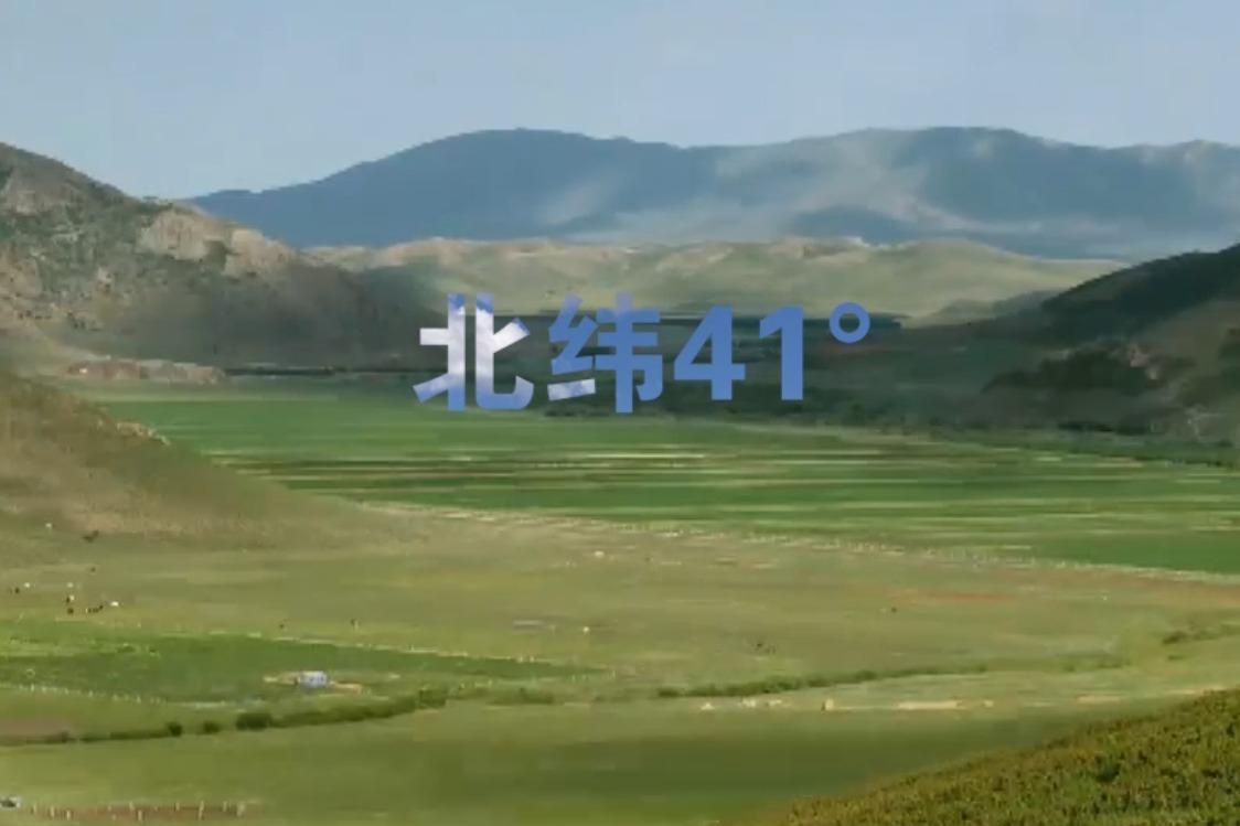 塞北马铃薯区域公用品牌宣传片发布预告片