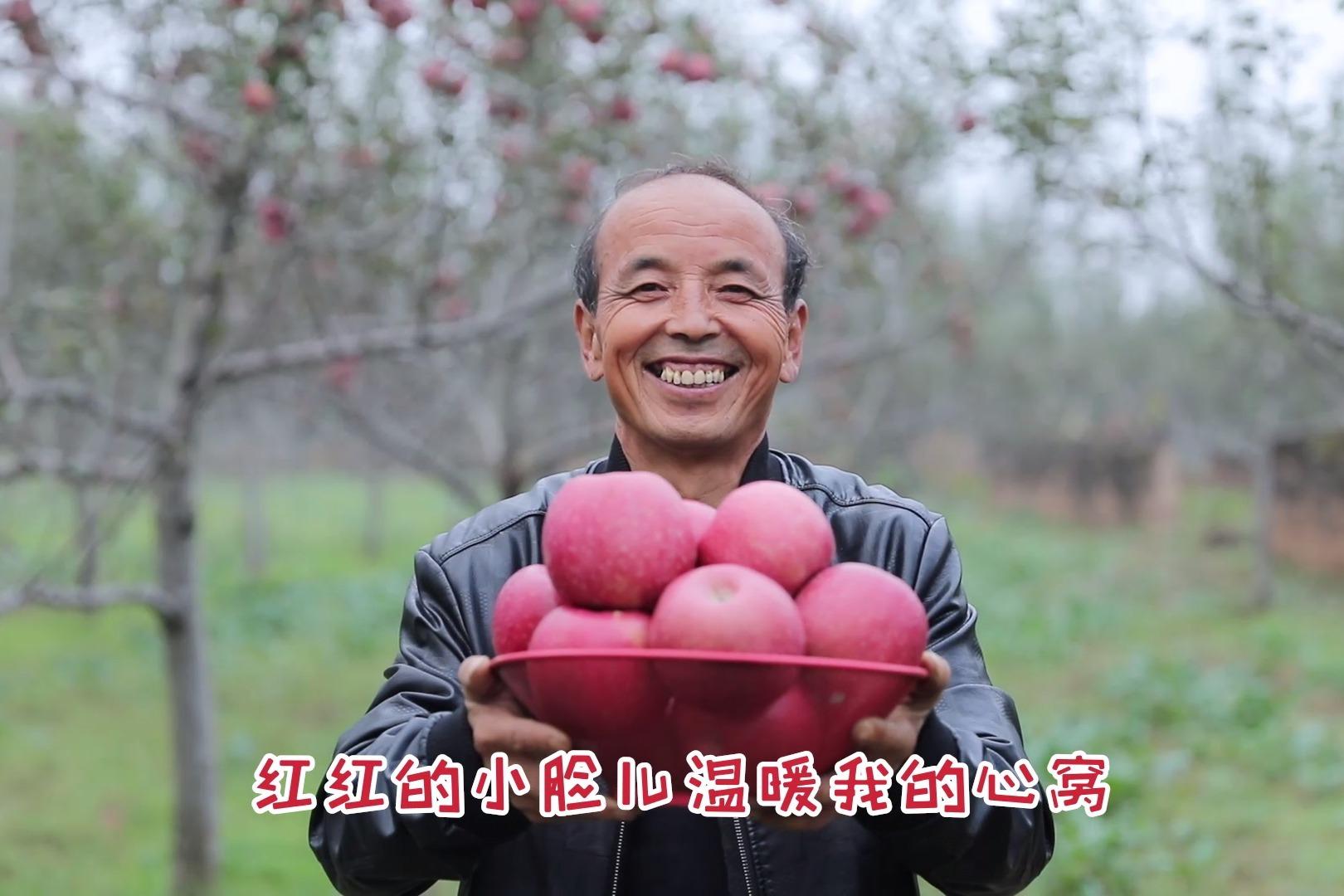 """蜜蜂TV中国行——陕西洛川""""苹果之乡"""",见证果农丰收的喜悦!"""