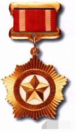 图8:朝鲜的金星奖章