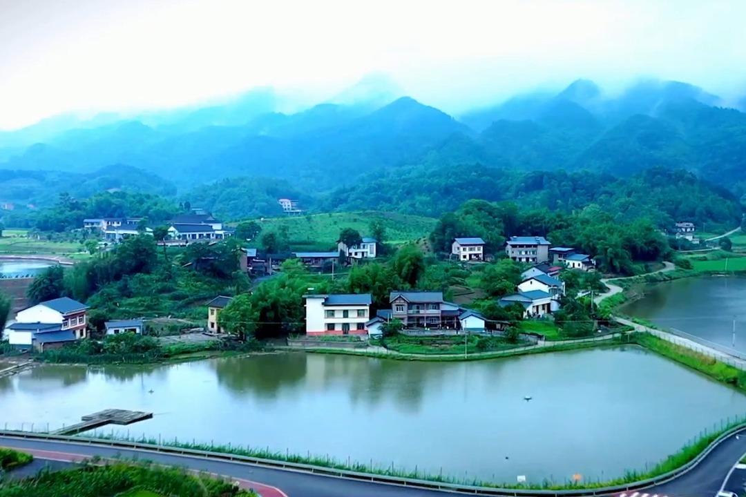 视频丨全国村庄清洁行动先进县 重庆巴南、铜梁上榜