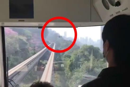 视频丨重庆单轨2号线列车在佛图关至大坪区间段遭无人机撞击