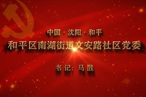 【视频】党,就在身边——沈阳和平区南湖街道文安路社区党委