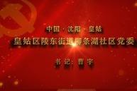 【视频】党,就在身边——沈阳市皇姑区陵东街道柳条湖社区党委