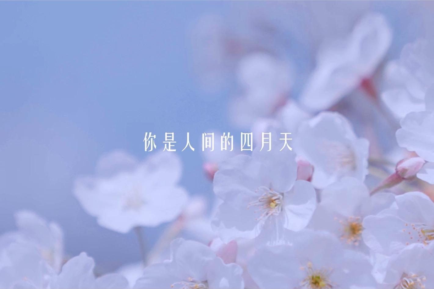 【山河春意】你是人间的四月天