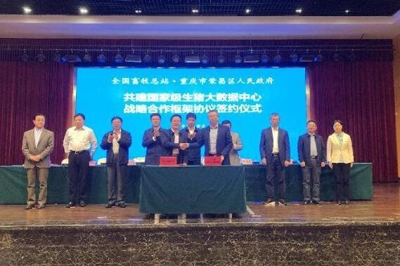 视频丨全国畜牧总站与荣昌区共建国家级生猪大数据中心