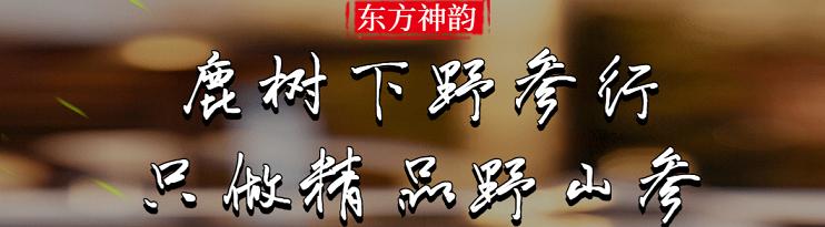 """鹿树下野参行源头甄选,高端野山参的""""伯乐"""""""