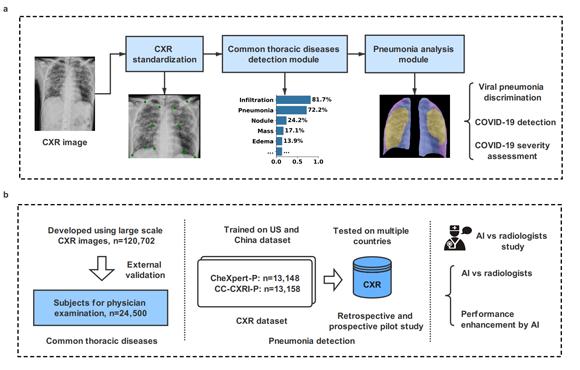 中山大学发表利用X线胸片人工智能诊断新冠肺炎的研究成果