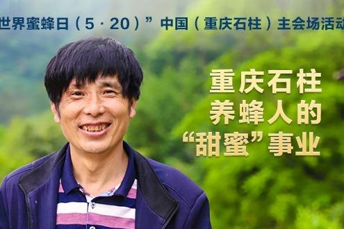 """视频丨重庆石柱养蜂人的""""甜蜜""""事业"""