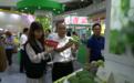 凤凰网广东走进广东东盟农博会之四