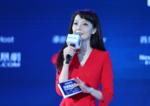 """凤凰网财经峰会圆桌对话 """"一带一路""""新格局"""