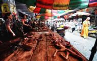 海潮音21期:玉林狗肉节之殇