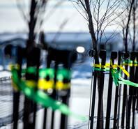 全城哀悼冰球队车祸遇难者 球队主色丝带寄哀思