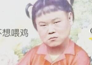 岳云鹏被骂上热搜?