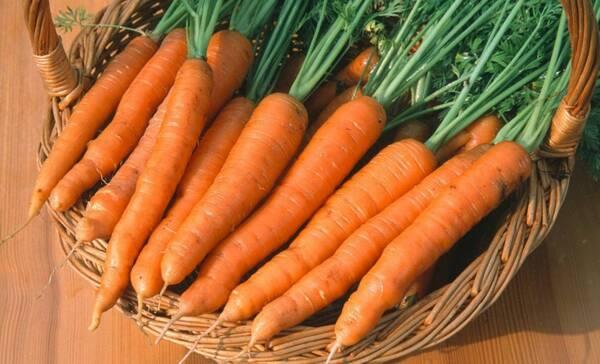 愛吃胡蘿卜的一定要收藏,教你5種胡蘿卜家常菜做法,好吃極了