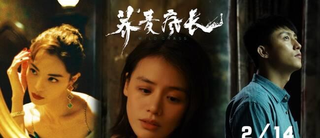 《荞麦疯长》提档2.14   马思纯钟楚曦黄景瑜为爱疯狂