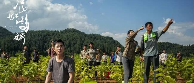 《江山如此多娇》:这部南方农村剧,竟然让我追得停不下来!