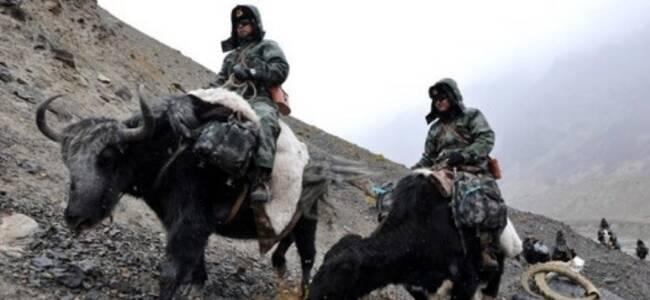 澳大利亚媒体:解放军实力已经世界前三了 怎么还要靠动物巡逻?