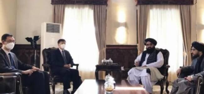 驻阿富汗大使:中国首批援阿越冬物资将于近日抵达