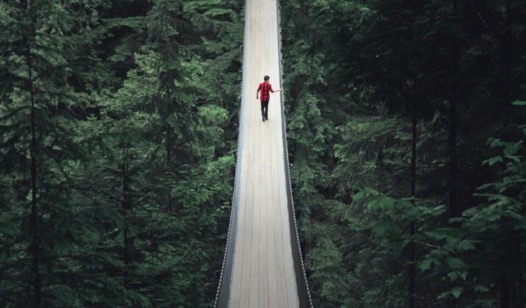 """步步惊心!加拿大""""惊悚吊桥""""悬挂高空森林环绕"""