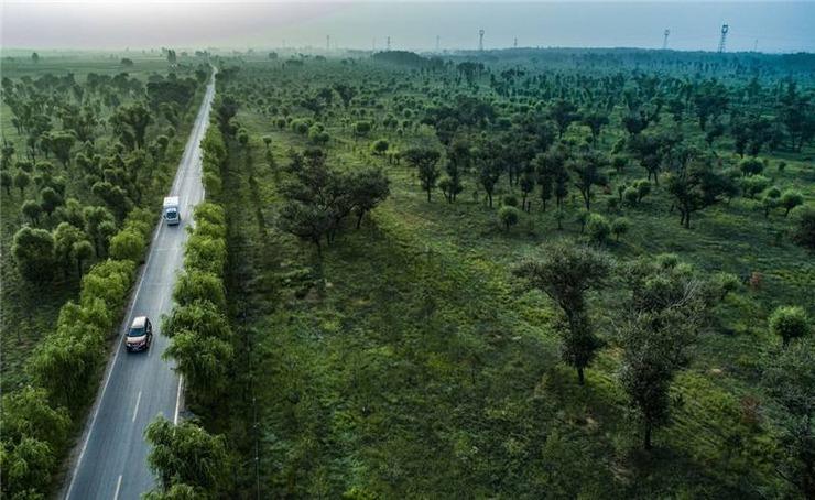 自1959年以来,中国人凭着自己的智慧和力量大力兴建防风林带,引水拉沙,引洪淤地,开展了改造沙漠的巨