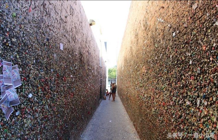 世界上最恶心的墙壁 你知道是哪里吗?