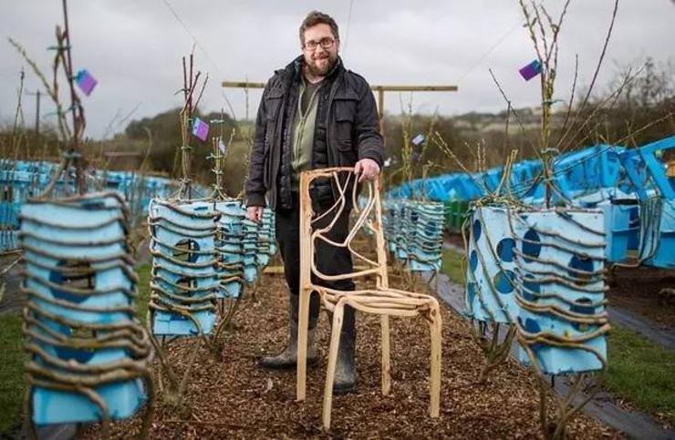 男子苦心研究12年 用树苗种种出椅子惊呆所有人!