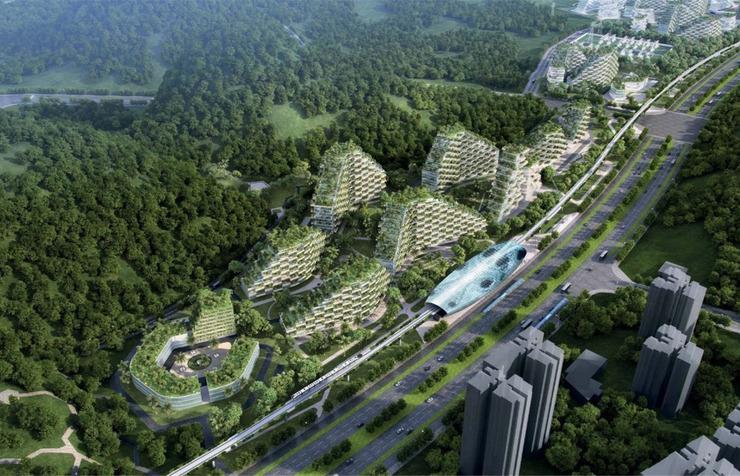中国第一座森林住宅 拥有4万棵树100万株植物